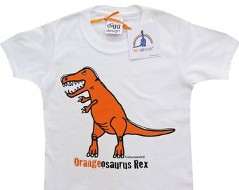 Kids unisex T-rex Dinosaur Cotton T.shirt. Sent in a fun rainbow mailbag!