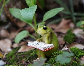 Miniature Small Frog Reading Book , Animal Figurines Fairy Garden Supplies Terrarium Accessories DIY Miniature Garden