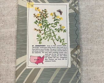 St. John's Wort Stitched Wallpaper & Fabric Journal Cover