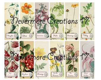 Button-Labeled Botanical Collage Sheets 36 Images DIGITAL VERSION