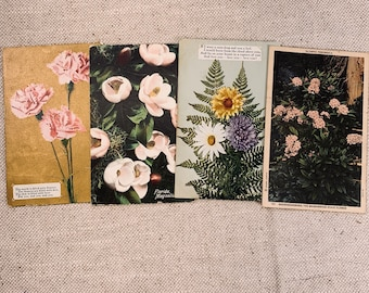 Sweet Floral Authentic Vintage Postcards Set of 4