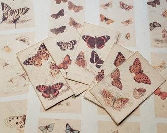 British Butterflies Mini Ephemera Pack - 27 images