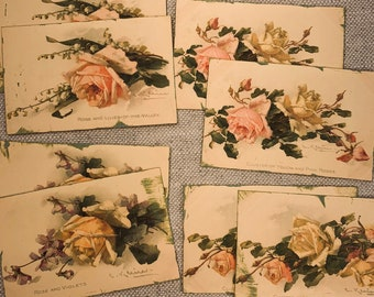 Vintage Rose Postcard Prints Set of 8