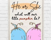 Printable He or She What Will Our Little Pumpkin Be Fall Welcome Gender Reveal Sign Autumn Baby Announcement Little Pumpkin is on the way