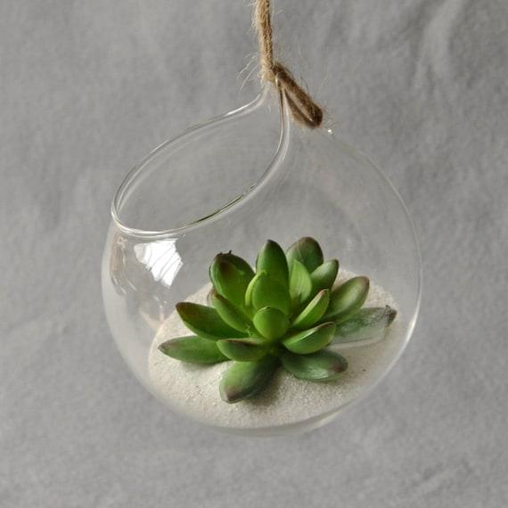 Hanging Glass Vase Hanging Terrarium Glass Vase Hydroponic Etsy