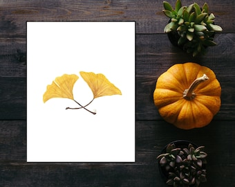 Ginkgo Leaves Watercolor Print - 8.5x11