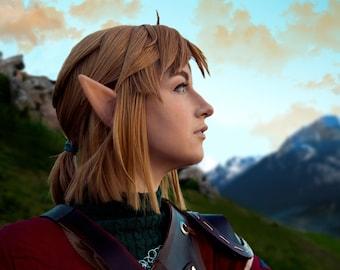 Breath of The Wild Link 1 - Legend of Zelda Cosplay Print