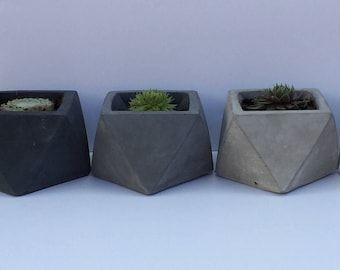 Geometric Concrete Planter for Succulents | Free UK Delivery