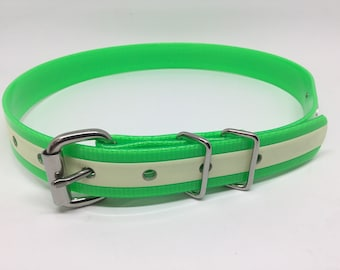 BioThane Glow-In-The-Dark Flat Buckle Dog Collar with Stainless Steel Hardware