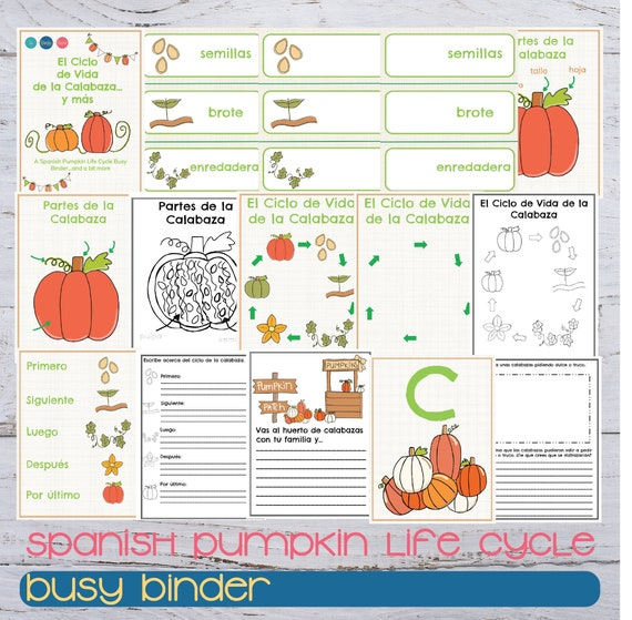 Pumpkin Life Cycle Spanish Binder Spanish Fall Busy Binder