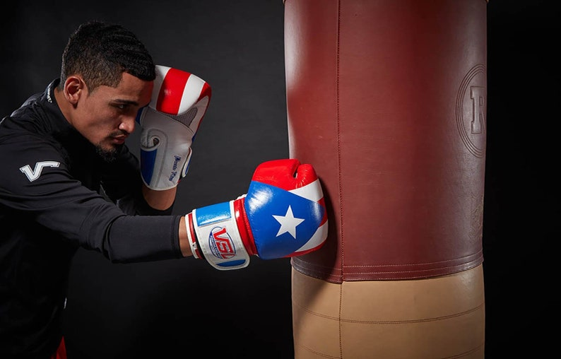 SHOWROOM Limited Edition MEXICO Valle 4000 LEATHER Pro Boxing Gloves