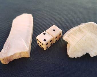 Real Elephant Bones (Dice) from Armenia