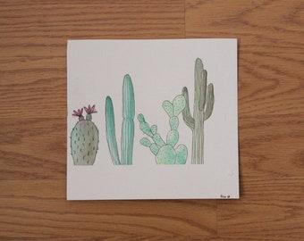 cactus sampler