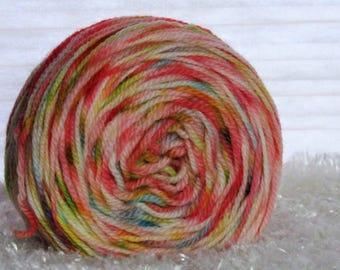 Carousel Hand-Dyed Yarn