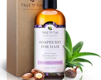 Smoothing Shampoo / Clarifying Shampoo / 100% Vegan Shampoo / Ayurvedic Shampoo / Herbal Shampoo / All Hair Types / Hair Cleanser