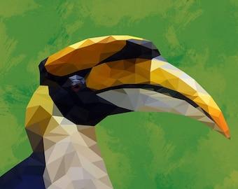 The Great Hornbill