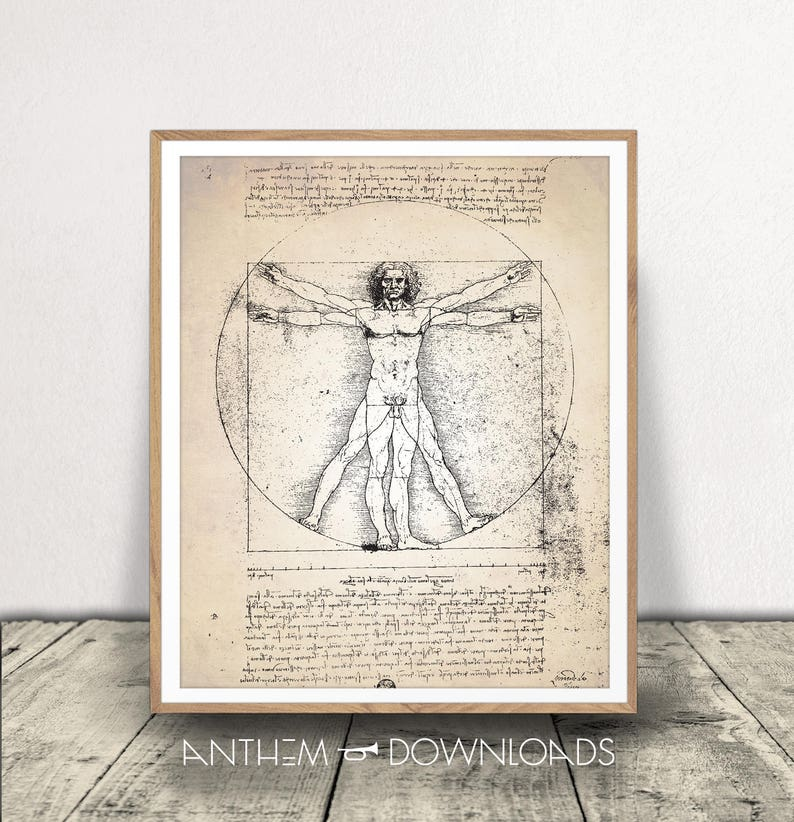 Vitruvian Man Da Vinci Print Human Anatomy Download Etsy