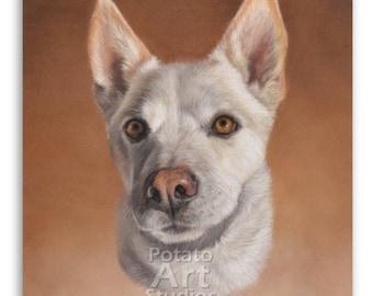 Custom 8 x 10 inch pet portrait / cat portrait / dog portrait / animal portrait / pastel pencil drawing / handmade original art