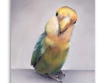 Small 8 x 10 inch Pet Portrait / Bird / Hamster / Rabbit / Mouse / Chinchilla / Ferret / Guinea Pig / Pastel Drawing / 100% hand-drawn!