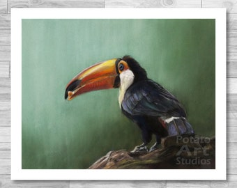 """Toucan Print (""""Skittles"""") Giclee Print Multiple Sizes Available 5x7 