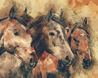 3 Horses, Animal Photography, All profits donated to TheirForeverHome.org