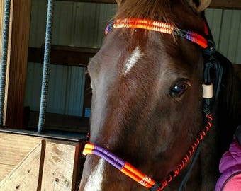 Clemson Tiger show halter, rope halter, horse tack, orange, purple
