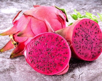 Plants, Seeds & Bulbs 50pcs Pitaya Seeds Red Dragon Fruit Seeds Pitaya Pitahaya Bonsai Very Beautiful Latest Technology