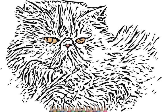 Páginas de para colorear de Pages.Cat colorear adultos | Etsy