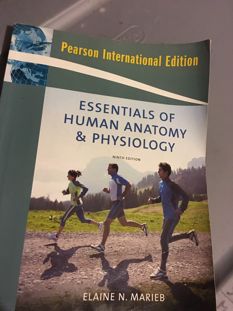 Essential Of Anatomy And Physiology By Marieb 9th Edition Etsy
