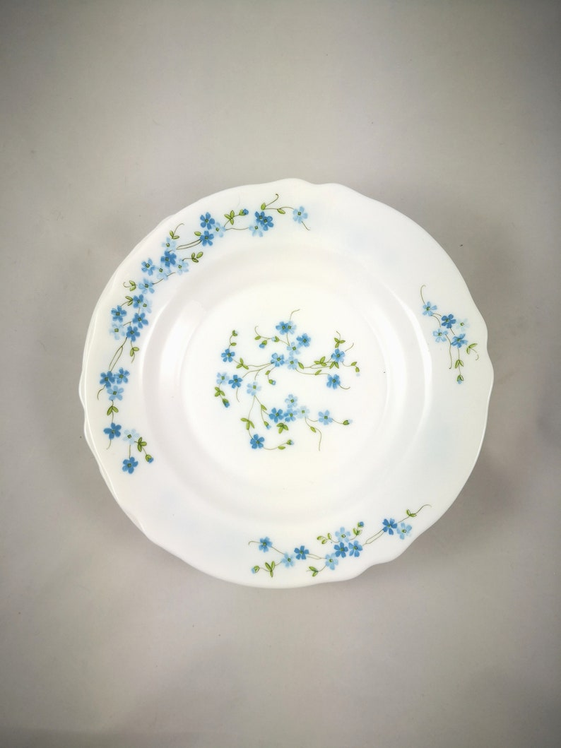 Piatti In Arcopal.Veronica Arcopal Myosotis 6 Soup Plates Vintage Arcopal France