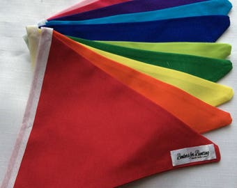 Rainbow themed Bunting. Party gift decoration banner.