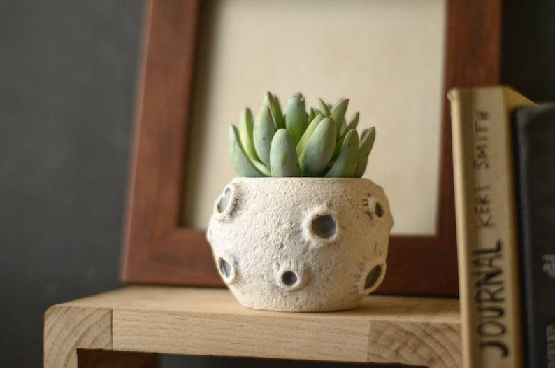 Pot planter. Moon pot. succulent pot. Cactus planter. Tiny image 0