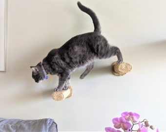 Cat Stairs / Wall-Mounted Cat Steps/ Cat Furniture / Cat Scratching / Sisal Climbing Post /Kitty Steps / Floating Cat Perch - 2 Step Pack