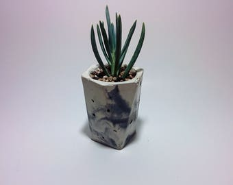 Concrete Planter or Cup