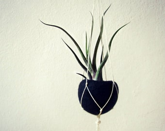 Macrame plant holder, pot hanger, air plant holder, macrame plant hanger, plant holder, plant pot, plant hanger, cactus pot, hanging planter