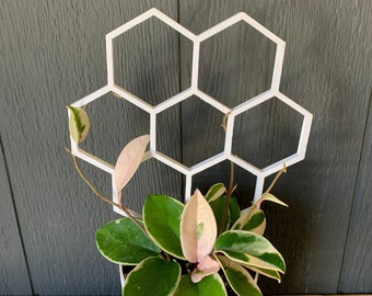 Indoor Plant Trellis for Climbing and Trailing Plants  3D Printed White BioPot Trellis