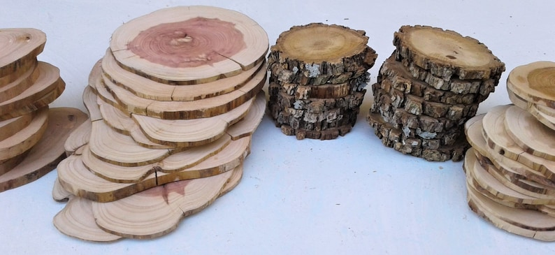 Elm Oak Mountain Cedar 50 Piece Tree Slice Assortment Red Cedar