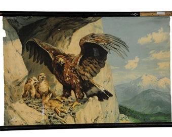 Eagles Nest Etsy