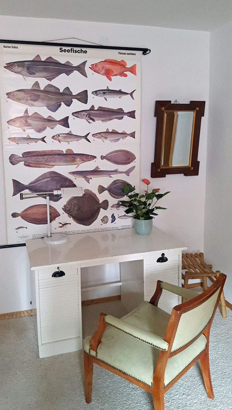 vintage wall chart picture poster nutrition angler maritime saltwater fish