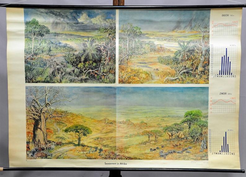 African savanna landscape art decoration poster print rollable wall chart