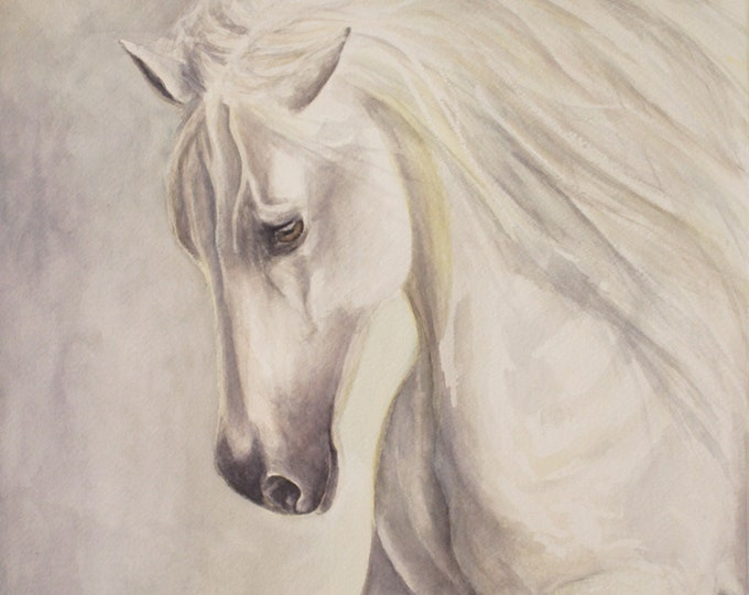 Original Horse Watercolour Art Framed in Professional Frame with Museum non reflective glass - watercolour white grey horse