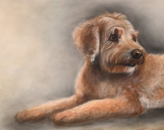 Labradoodle Dog Art Archival Print. Soft and detailed, realistic dog art - Labradoodle gift, labradoodle portrait. Cute Coco the dog!