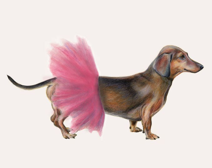 Dachshund wearing tutu - Sausage dog art. Daxy art. Dog art print. Dog print. Dachshund print. Can be customised with name etc. Bridesmaid