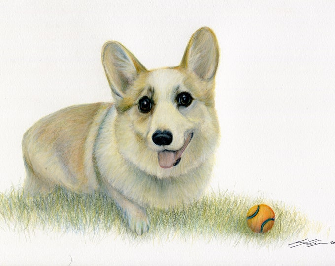 Corgi dog drawing - cute corgi dog puppy print. Animal print. Great gift for the corgi lover in your life.