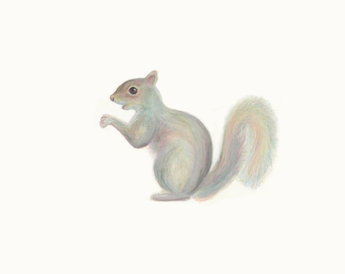 Squirrel drawing - fine art print for children's room. Nursery art. Woodland art. Woodland animal print. Baby shower.