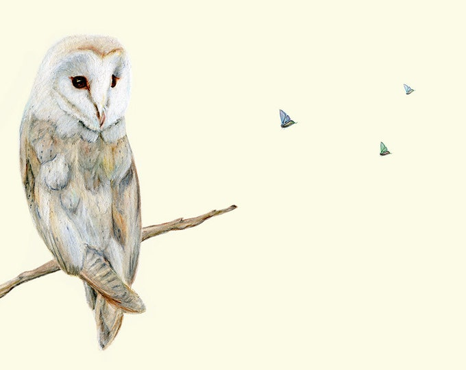 Owl Print. Exceptional quality original owl gift. Wall art owl decor, owl gift. Barn owl artwork, owl art. Animal print