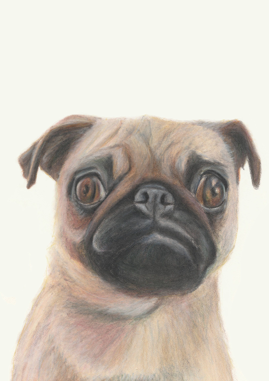84fae7aed801 Pug dog art. Cute pug print. Dog print. Great teenager gift.   Etsy