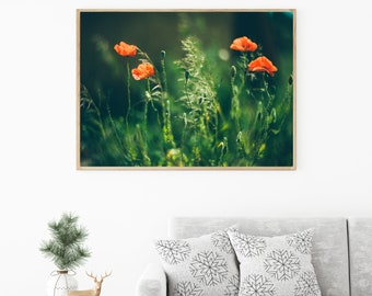 Red Poppies photography, Red home decor, Rustic home decor, Bedroom art, Flower wall art, Nature photography, Floral photography, Home decor