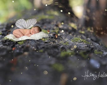 Magical Fairy Digital Backdrop/Background with Cutout Translucent Moss Overlay