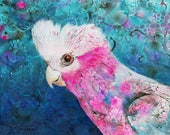 Pink and Grey Galah fine art print - Australian bird - Cockatoo art print - bird portrait - by Michelle Gilks